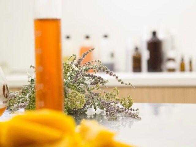 kosmetyki zioła naturalne składniki